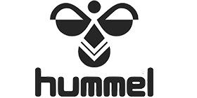 http://vcbolsward.nl/wp-content/uploads/2015/12/Hummel.jpg